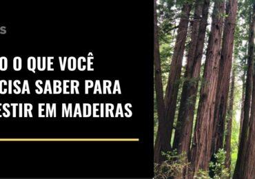 Tudo o que você precisa saber para investir em terras florestais