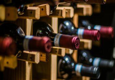 O que você precisa saber antes de investir em um vinhedo