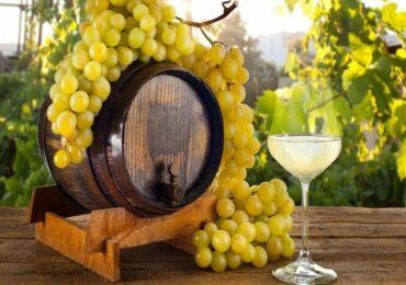 Investir em Vinhos: um Passion Asset