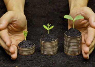 Investimento de impacto aumenta rentabilidade e diversifica carteira