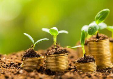 Diferenças entre Letra de Crédito do Agronegócio (LCA) e Certificado de Recebíveis do Agronegócio (CRA)
