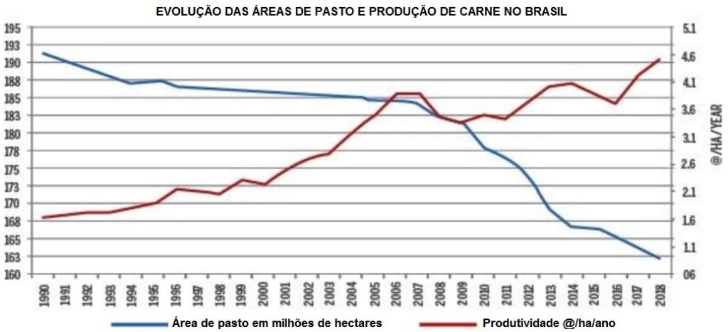 evolução das áreas de pasto e produção de carne no brasil