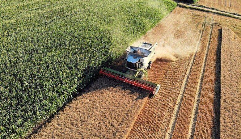 fiagro, fundo de investimento agronegócio