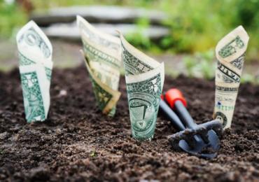 Venture capital: entenda como funciona o investimento direto em novas empresas
