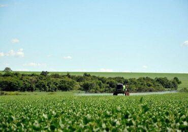 Safra de IPOs do agronegócio reforça tese de investimento no setor