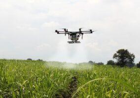 Commodities agrícolas: complexo sucroalcooleiro dá salto histórico na balança comercial